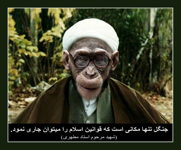 ayatollah_monkey01