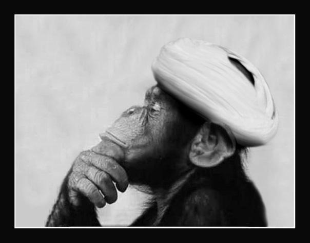 ayatollah_monkey03
