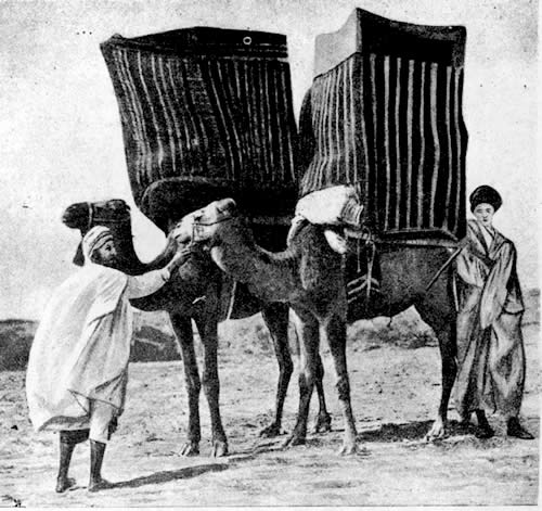 muslimwomenpalanquins